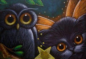 owl-kitten